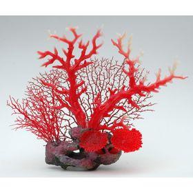 Композиция из кораллов пластиковая 32х13х28см (SH9574B)