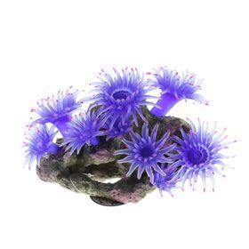 Коралл силиконовый синий 20х12х14см (SH208B)