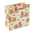 """Пакет подарочный """"Велосипед"""" 23 х 22.5 х 10 см"""