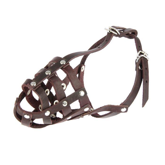 Намордник кожаный «Зооник» №1 (спаниель, сеттер), длина по носу 8 см, обхват морды 25 см, микс