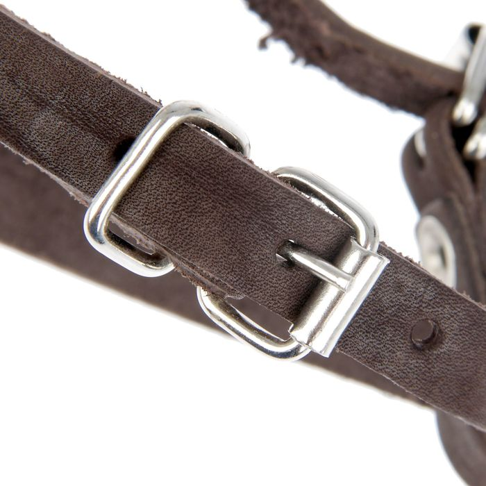 Намордник кожаный «Зооник» №5 (немецкая овчарка, терьер), длина по носу 11 см, обхват морды 36 см, микс