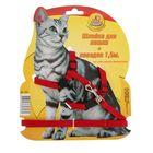 Комплект для кошки Зооник, шлейка и поводок 1,5 м микс цветов