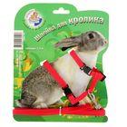 Комплект для кролика Зооник, шлейка и поводок 1,5 м  микс цветов