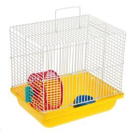 Клетка для джунгариков Зооник, 22,5 х 16,5 х 21 см, микс