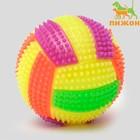 """Мяч для собак светящийся с пищалкой """"Водное поло"""", 7 см, микс цветов"""