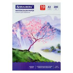 Папка для акварели А3, 297 х 420 мм, 10 листов, блок 200 г/м2 бумага по ГОСТ 7277-77