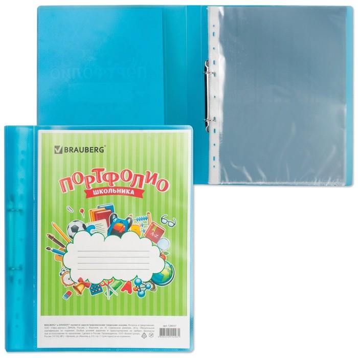 Портфолио школьника, папка, 2 кольца, 20 вкладышей, синяя, полупрозрачная
