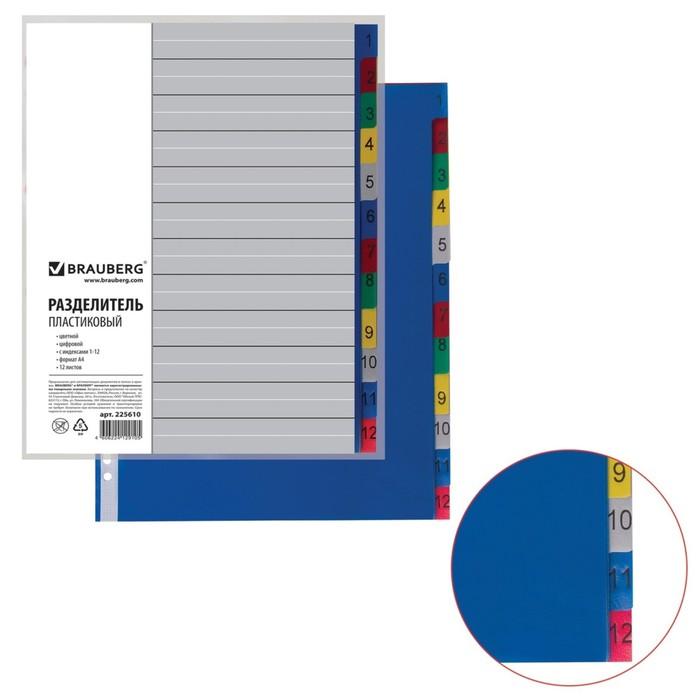 Разделитель пластиковый А4, 12 листов, цифровой 1-12, оглавление, цветной