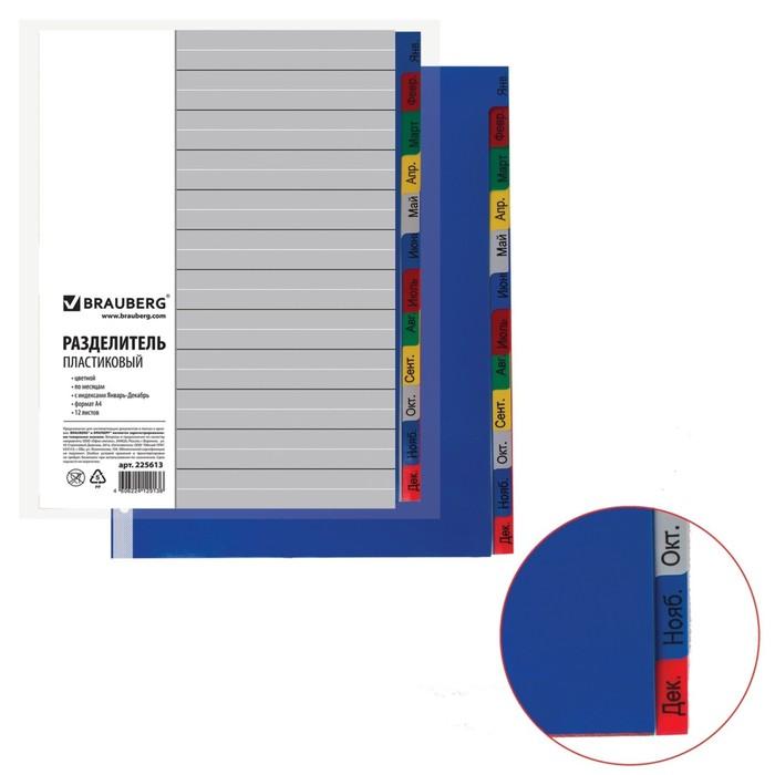 Разделитель пластиковый А4, 12 листов, Январь-Декабрь, оглавление, цветной