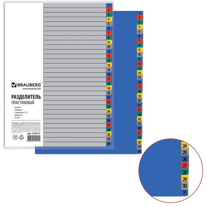 Разделитель пластиковый А4, 31 лист, цифровой 1-31, оглавление, цветной
