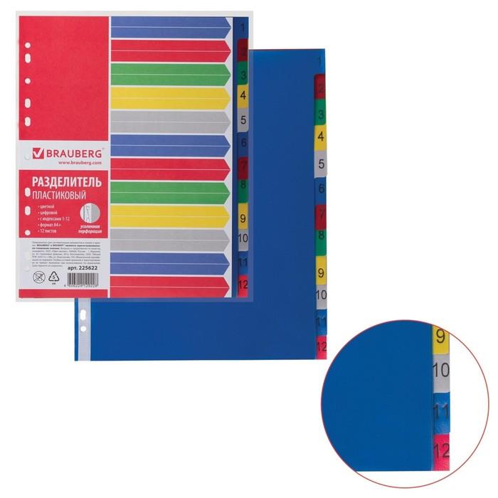 Разделитель пластиковый А4+, 12 листов, цифровой 1-12, оглавление, цветной