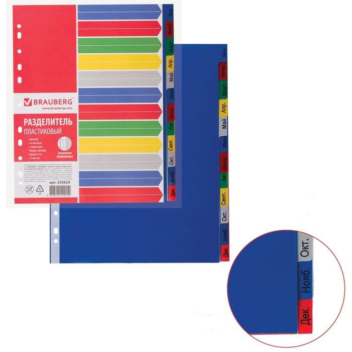 Разделитель пластиковый А4+, 12 листов, Январь-Декабрь, оглавление, цветной