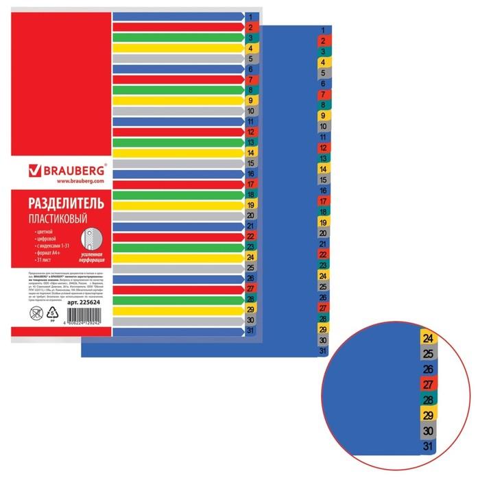 Разделитель пластиковый А4+, 31 лист, цифровой 1-31, оглавление, цветной