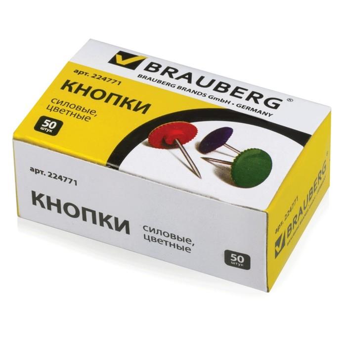 Кнопки силовые цветные, круглые, 12мм, 50 штук, в картонной коробке