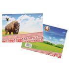 Конверт почтовый с клеевым слоем «Беларусь»
