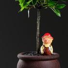"""Автополив для комнатных растений """"Человек"""", микс, 50 мл"""
