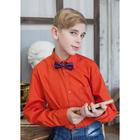 Сорочка для мальчика, рост 122-128 см (31), цвет кирпич 181А