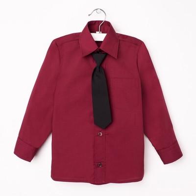 Сорочка для мальчика, нарядная с галстуком, рост 98-104 см (27), цвет бордо  1181