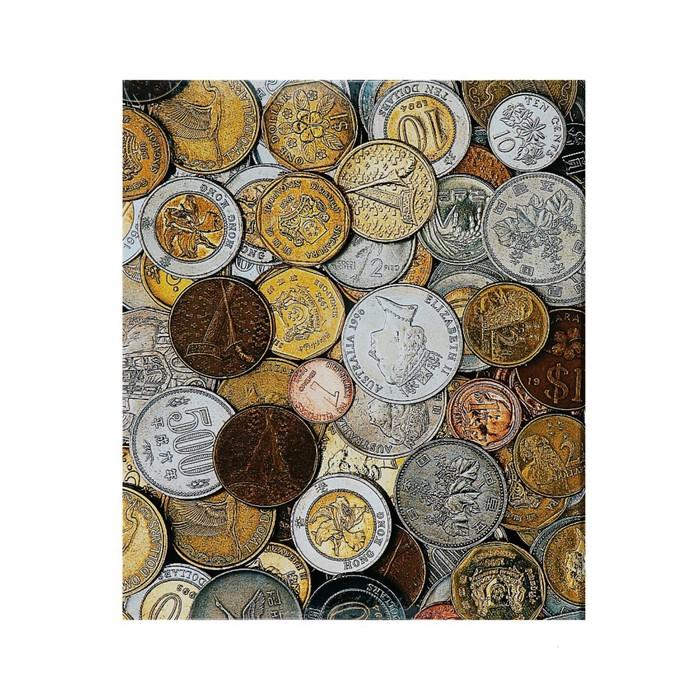 Альбом для монет на кольцах Оптима 225*265 мм, обложка ламинированный картон