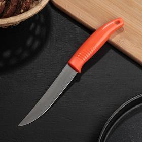 Нож кухонный «Ланфорд», лезвие 11 см, цвет МИКС Ош