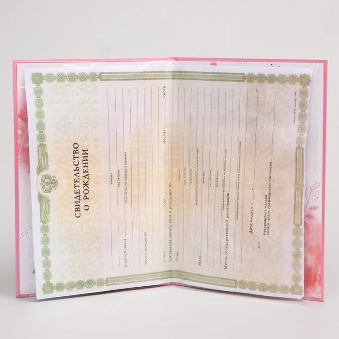 """Свидетельство о рождении с файлом """"Винни и друзья"""", Медвежонок Винни и его друзья, 16,5 х 24 см (старый формат свидетельства)"""
