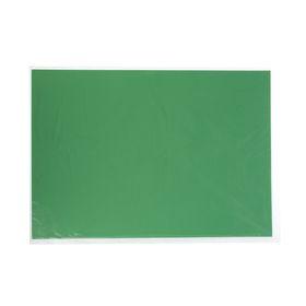 Картон цветной, 650 х 500 мм, Sadipal Sirio, 1 лист, 170 г/м2, зеленый 05939