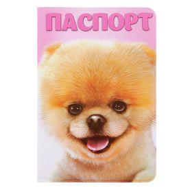 Обложка для паспорта 'Шпиц' Ош