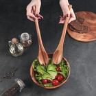 Приборы для салата тонированные Green way, 2 предмета