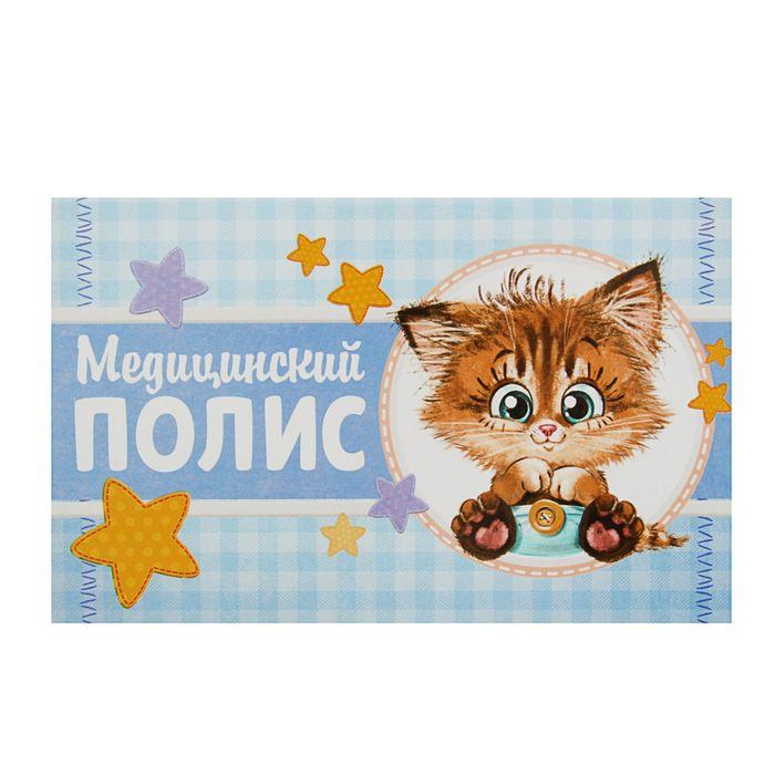 """Папка для медицинского полиса """"Котик"""""""