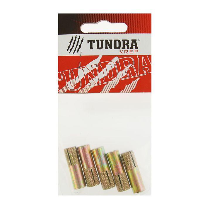 Анкер забиваемый оцинкованный TUNDRA krep, М8, в пакете 5 шт.