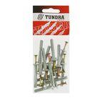 Дюбель-гвоздь TUNDRA krep, 6х40 мм, грибовидная манжета, полипропилен, в пакете 16 шт.