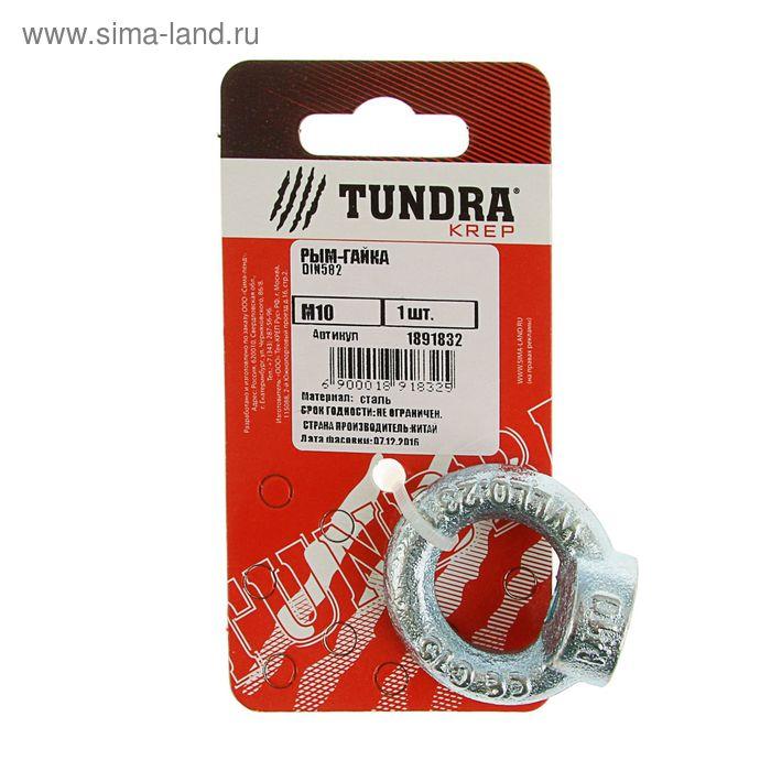 Рым-гайка DIN582 TUNDRA krep, М10