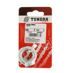 Рым-гайка DIN582 TUNDRA krep, М8