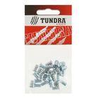 Еврошуруп потолочный TUNDRA krep, оцинкованный, 6.3х11 мм, в пакете 30 шт.
