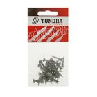 Саморезы по дереву TUNDRA krep, 3.5(3.8)х19 мм, оксид, крупный шаг, 40 шт.