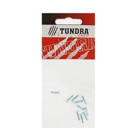 Винт DIN965 TUNDRA krep, с потайной головкой, оцинк. М3х12 мм, в пакете 10 шт. Ош