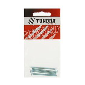 Винт DIN965 TUNDRA krep, с потайной головкой, оцинк. М4х50 мм, в пакете 4 шт. Ош