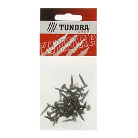 Screw for metal, TUNDRA krep, 3.5x19 mm, oxide, common thread, 40 PCs.