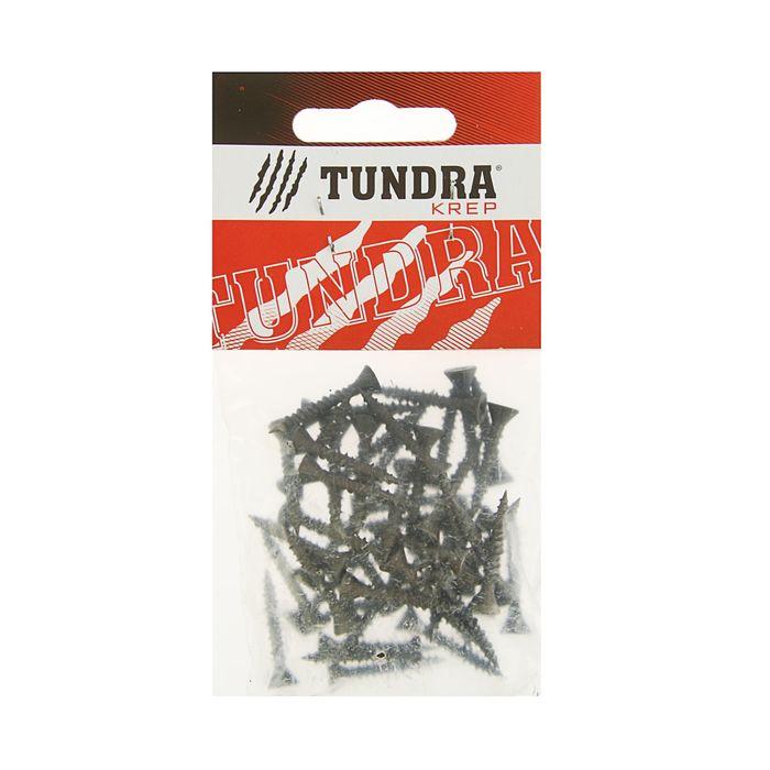 Саморезы по ГВЛ TUNDRA krep, 3.9х25 мм, 50 шт.