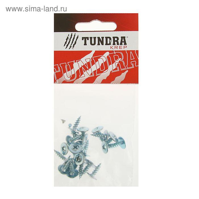 Саморезы с прессшайбой TUNDRA krep, 4.2х13 мм, острый, 22 шт.