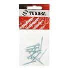 Саморезы с прессшайбой TUNDRA krep, 4.2х32 мм, острый, 10 шт.