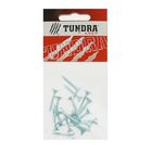 Саморезы универсальные TUNDRA krep, 4.5х25 мм, цинк, потай, 18 шт.