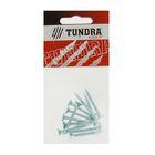Саморезы универсальные TUNDRA krep, 4.5х35 мм, цинк, потай, 12 шт.