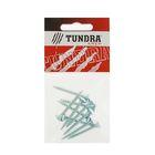 Саморезы универсальные TUNDRA krep, 5х40 мм, цинк, потай, 10 шт.