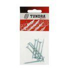Саморезы универсальные TUNDRA krep, 5х50 мм, цинк, потай, 8 шт.