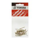 Саморезы универсальные TUNDRA krep, 2.5х25 мм, жёлтый цинк, потай, 25 шт.