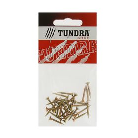 Screws universal TUNDRA krep, 3x20 mm, yellow zinc, sweat, 30 PCs.