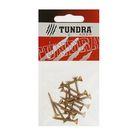 Саморезы универсальные TUNDRA krep, 4х30 мм, жёлтый цинк, потай, 17 шт.
