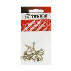 Саморезы универсальные TUNDRA krep, 5х20 мм, жёлтый цинк, потай, 16 шт.
