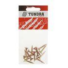 Саморезы универсальные TUNDRA krep, 5х25 мм, жёлтый цинк, потай, 14 шт.
